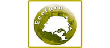 Ecofurn Beds at Best Price Beds