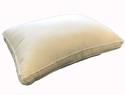 Loren Williams Phoenix Pocket Pillow